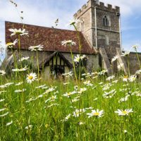 Church with meadow flowers