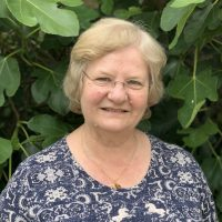 Stand for Diocesan Synod – last chance for nominations